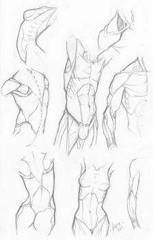 Random anatomy sketches 5 by RV1994