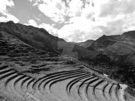 Terraced by Peterodl