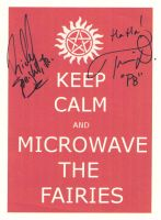 Microwave the Fairies signed by Meadowknight