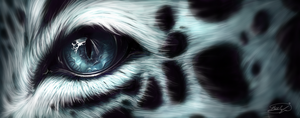 Snow Leopard Eye by Lahvorre