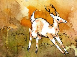 White Stag by ms-pen