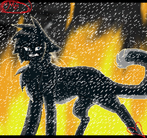 Ashfur - REVENGE by Shadowfeather2020