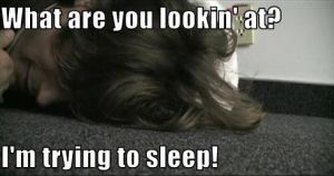Trying to sleep by Katerinoooz