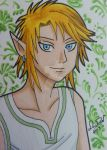 Link ACEO card 3 by LadyNin-Chan