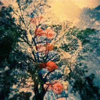 ballon tree by byebyebeautifool