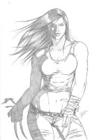 X-23 10 by Dannith
