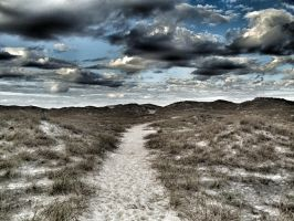 The trail to Oceanside by denehy