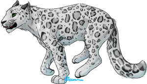 Snow leopard sketch by Beenabutter