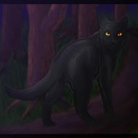 Nightstar of ShadowClan by xxMoonwish
