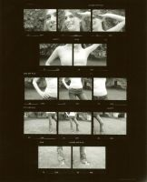 contact print by swallowingwords