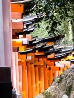 Torii 13 by thecomingwinter
