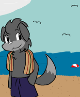 Summer Beach Fun by BuizelKnight