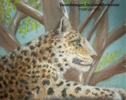 Leopard by TaraDragon