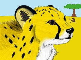 Cheetah on corel by fluffylovey