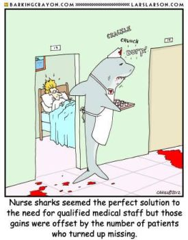 Nurse Shark by AtomicCheese