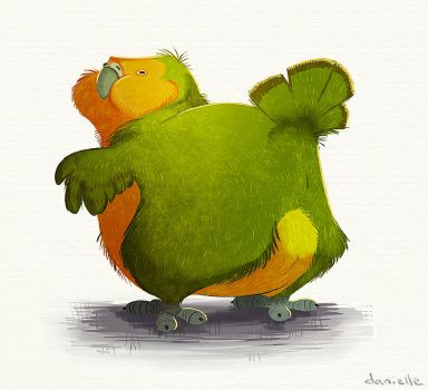 Kakapo Booty by doingwell
