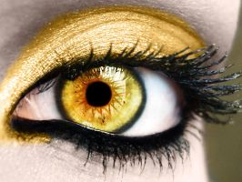 Cullen Eye by LoverofFiction
