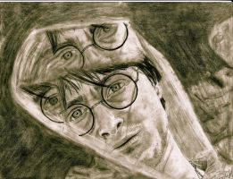 Harry Potter's Reflection by ashleymd7