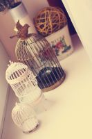 Bird cages by SelenaAdorian