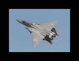 Strike Eagle on the Fly by OpticaLLightspeed