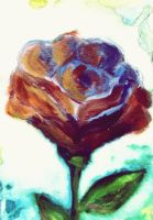 Rose by Mary-Alice29