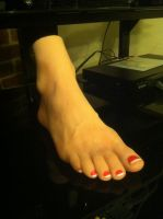 On Display by footlover527