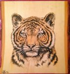 Tiger (on) wood by Bisanti