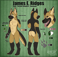 ::James Ref 2015:: by DogsTeeth