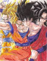 The Legacy Of Son Goku by Shadow-Ishimori-Clan