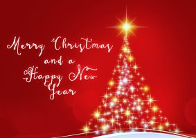 Merry Christmas / Happy New Year by AuxRane