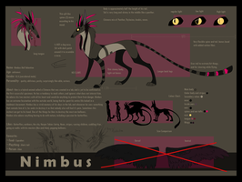 Nimbus reference Sheet 2010 by King-Chimera