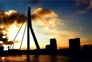 The Bridge of Rotterdam by Destroth