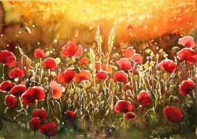 Summer Poppies by JoaRosa