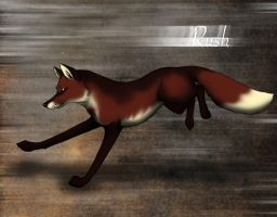 Rush - The Cloudwood Fox character by WolfScribe