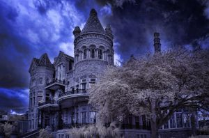 galveston bishop's palace by badchess