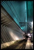 Guillemins III by kromo