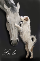 Horse and dog by Le-laa