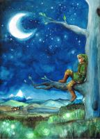 Link and the moonlight by Avantalia