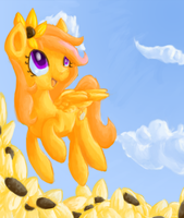 RQ: Sunny Hooves by Paintrolleire