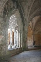 Within the Arches by RaeyenIrael-Stock