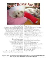 Tina's Bicycle Accident Flyer by EmmaL27