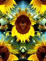 Psychadelic Sunflowers by Kake-129