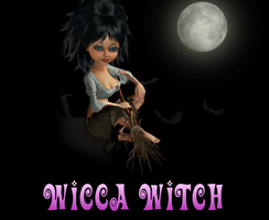 Wicca Witch Journal skin by MoonZaphire