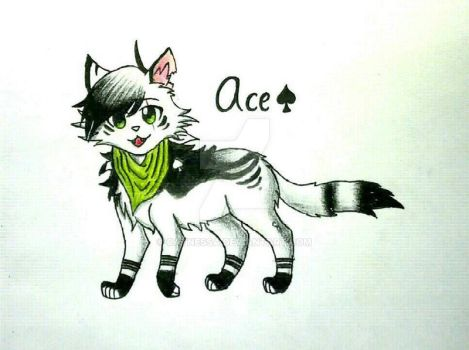 Contest Entry: Ace by Catnessa