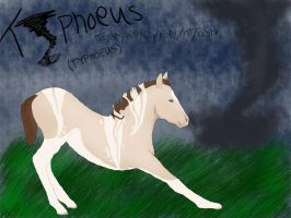 Typhoeus ID 1110 by Annaisse