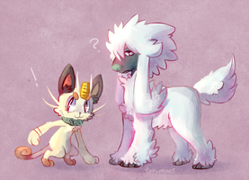 Meowth and Furfrou by Tokiball12345