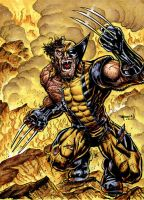 Wolverine On Fire by RayDillon