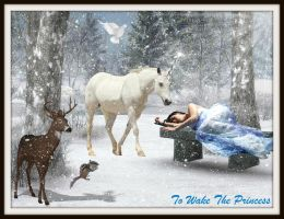 To Wake The Princess: Winter Magic Contest by PrincessSerenity29