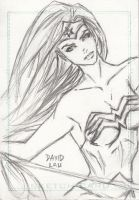 Wonder Woman Sketch Card by DavidLau82