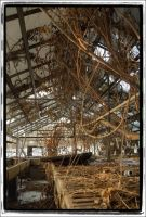Decaying Greenhouse by mastermayhem